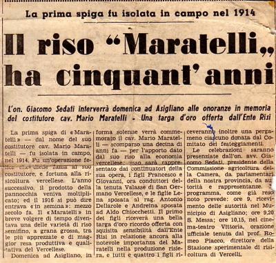 La Sesia-1966