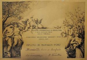Regia Stazione Sperimentale VERCELLI 1922 copia
